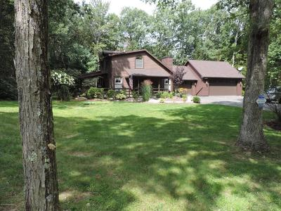 Jim Thorpe Single Family Home For Sale: 79 Midway Dr
