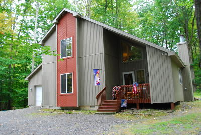 Pocono Lake Single Family Home For Sale: 256 White Pine Pne