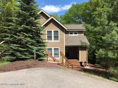 Tannersville Single Family Home For Sale: 470 Spruce Dr