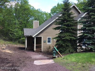 Tannersville Single Family Home For Sale: 469 Spruce Dr