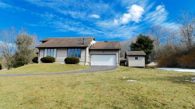 Saylorsburg Single Family Home For Sale: 290 S Easton Belmont Pike