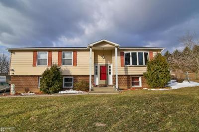 Kunkletown Single Family Home For Sale: 1255 Trachsville Hill Rd