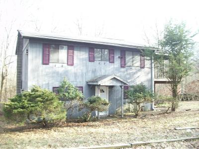 East Stroudsburg Single Family Home For Sale: 672 Cherry Lane Road