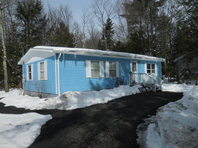 Pocono Summit Single Family Home For Sale: 482 Alter Ave