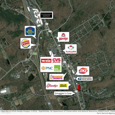 Tannersville Commercial For Sale: 2977 Route 611