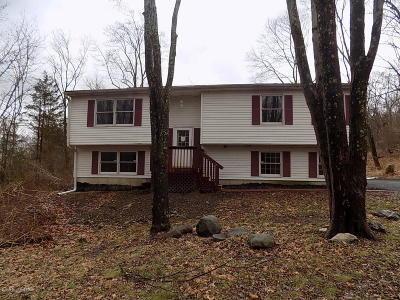 East Stroudsburg Single Family Home For Sale: 2231 Campanile Ct