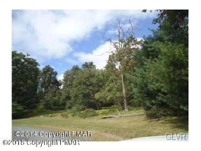 Tannersville Residential Lots & Land For Sale: Camelback