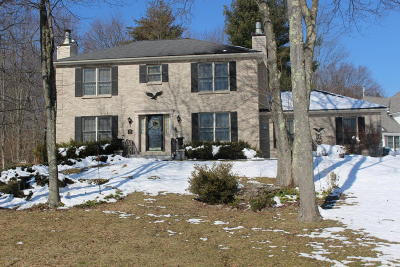 East Stroudsburg Single Family Home For Sale: 301 Jennis Ln