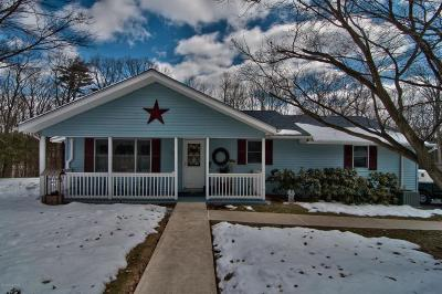 East Stroudsburg Single Family Home For Sale: 33 Brush Dr.