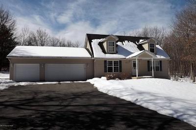 Jim Thorpe Single Family Home For Sale: 82 Drakes Dr