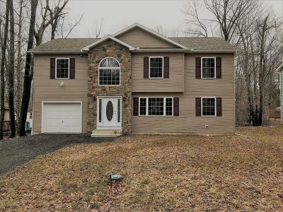 Tobyhanna PA Single Family Home For Sale: $199,900