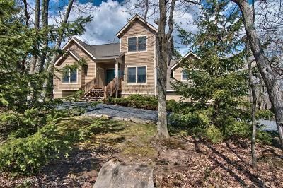 Tannersville Single Family Home For Sale: 203 Upper Deer Valley Rd