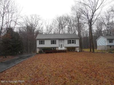 East Stroudsburg Single Family Home For Sale: 48 Bull Pne