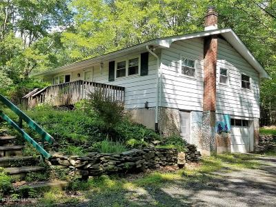Tannersville Single Family Home For Sale: 110 Kresge Ln