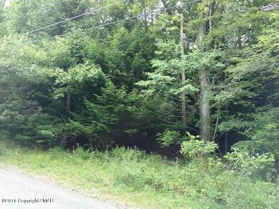Pocono Summit Residential Lots & Land For Sale: Thunder Ln