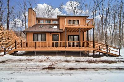 Pocono Lake Single Family Home For Sale: 205 Choctaw Dr