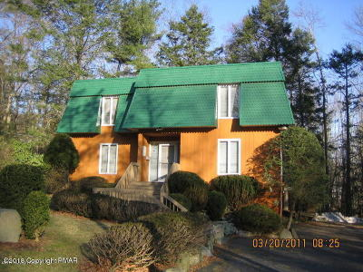 Single Family Home For Sale: 1359 Route 390