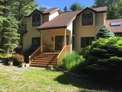 Pocono Lake Single Family Home For Sale: 402 Sawmill Rd