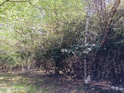 Lake Naomi Residential Lots & Land For Sale: 3 Canoe Brook