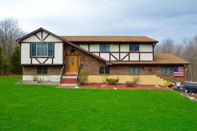 Jim Thorpe Single Family Home For Sale: 62 Panther Run Rd