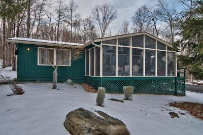Canadensis Single Family Home For Sale: 173 Blue Ridge Dr