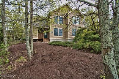 Tannersville Single Family Home For Sale: 149 Pine Ct