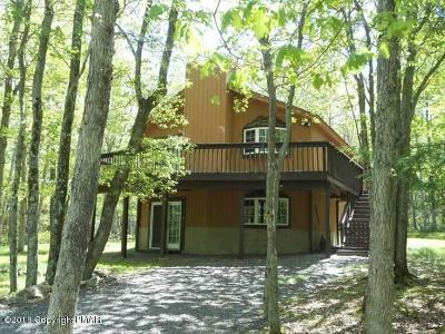 Jim Thorpe Single Family Home For Sale: 340 Mountain View Dr