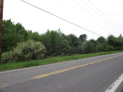 East Stroudsburg Residential Lots & Land For Sale: T556 56 Wooddale T 556 Rd