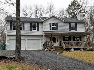 East Stroudsburg Single Family Home For Sale: 1117 Kingbird Trl