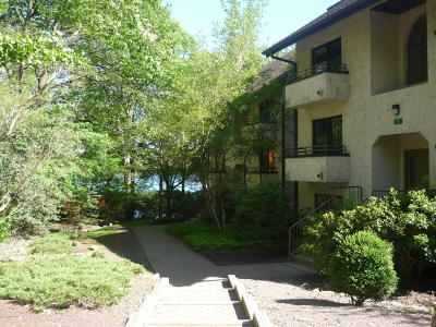 Lake Harmony Single Family Home For Sale: 102 Unit 5 Midlake Dr