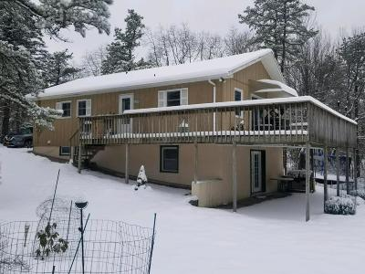 Long Pond Single Family Home For Sale: 195 Sage Rd