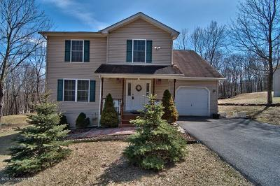East Stroudsburg Single Family Home For Sale: 4140 White Birch Dr