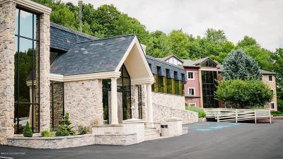 East Stroudsburg Commercial For Sale: 528 Seven Bridge Suite 100 A Road