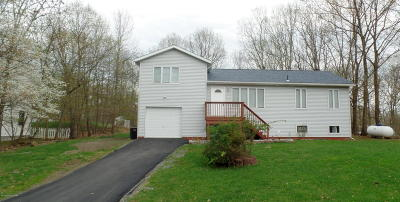 East Stroudsburg Single Family Home For Sale: 12719 Magnolia Dr