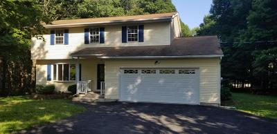 Saylorsburg Single Family Home For Sale: 206 Warner Dr