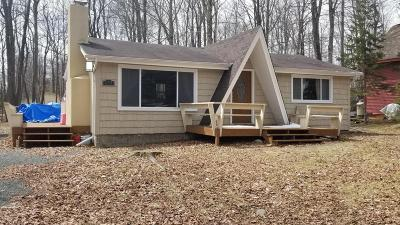 Pocono Lake Single Family Home For Sale: 225 Tepee Dr