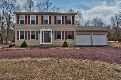 Albrightsville Single Family Home For Sale: 66 Foothill Road