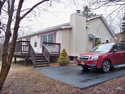Albrightsville Single Family Home For Sale: 159 Lookout Dr