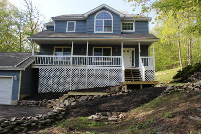 East Stroudsburg Single Family Home For Sale: 360 Eastshore Dr
