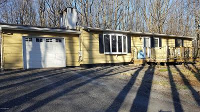 Jim Thorpe Single Family Home For Sale: 97 White Birch Dr