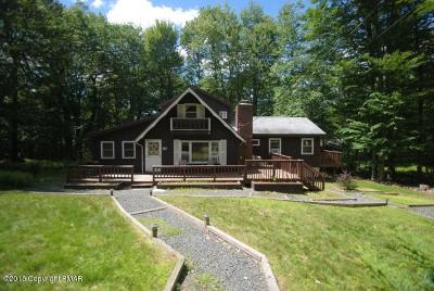 Pocono Lake Single Family Home For Sale: 134 Ski Trl