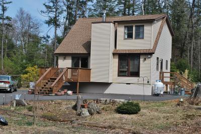 Towamensing Trails Single Family Home For Sale: 47 Longfellow Cir