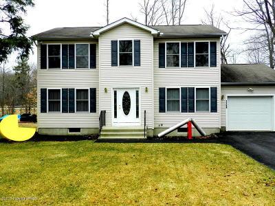 Pocono Summit Single Family Home For Sale: 1168 Trapper Ln
