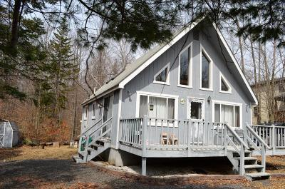 Pocono Lake Single Family Home For Sale: 339 Maxatawny Dr