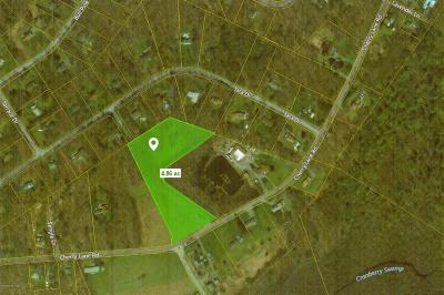 Tannersville Residential Lots & Land For Sale: 1001 Cherry Ln Sr 1001 Rd