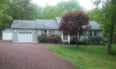 Jim Thorpe Single Family Home For Sale: 277 Mountain View Dr