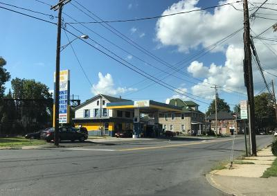 East Stroudsburg Commercial For Sale: 365 N Courtland St