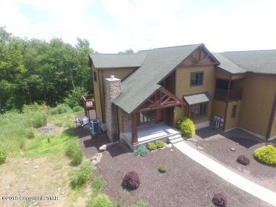 Lake Harmony Single Family Home For Sale: 68 Woodsbluff Ct