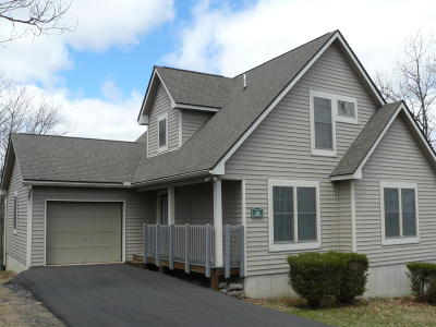Tannersville Single Family Home For Sale: 207 Upper Deer Valley Rd