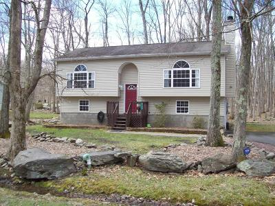 East Stroudsburg Single Family Home For Sale: 4209 Woodacres Dr